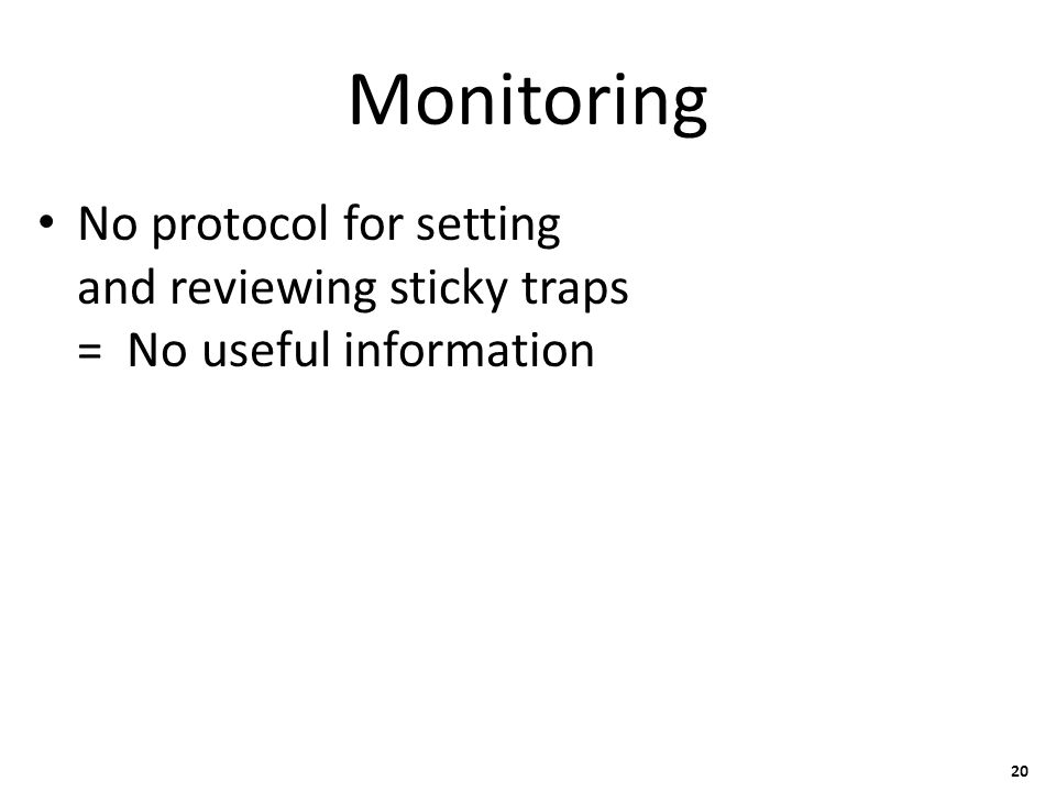 Monitoring No protocol for setting and reviewing sticky traps = No useful information 20