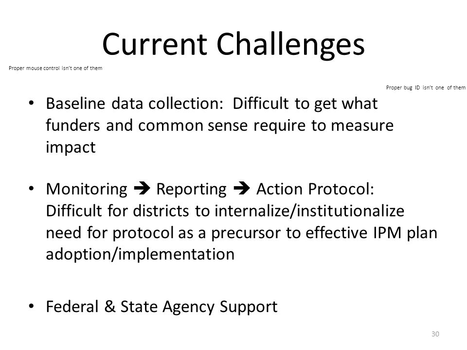 Current Challenges Baseline data collection: Difficult to get what funders and common sense require to measure impact Monitoring  Reporting  Action Protocol: Difficult for districts to internalize/institutionalize need for protocol as a precursor to effective IPM plan adoption/implementation Federal & State Agency Support 30 Proper bug ID isn't one of them Proper mouse control isn't one of them