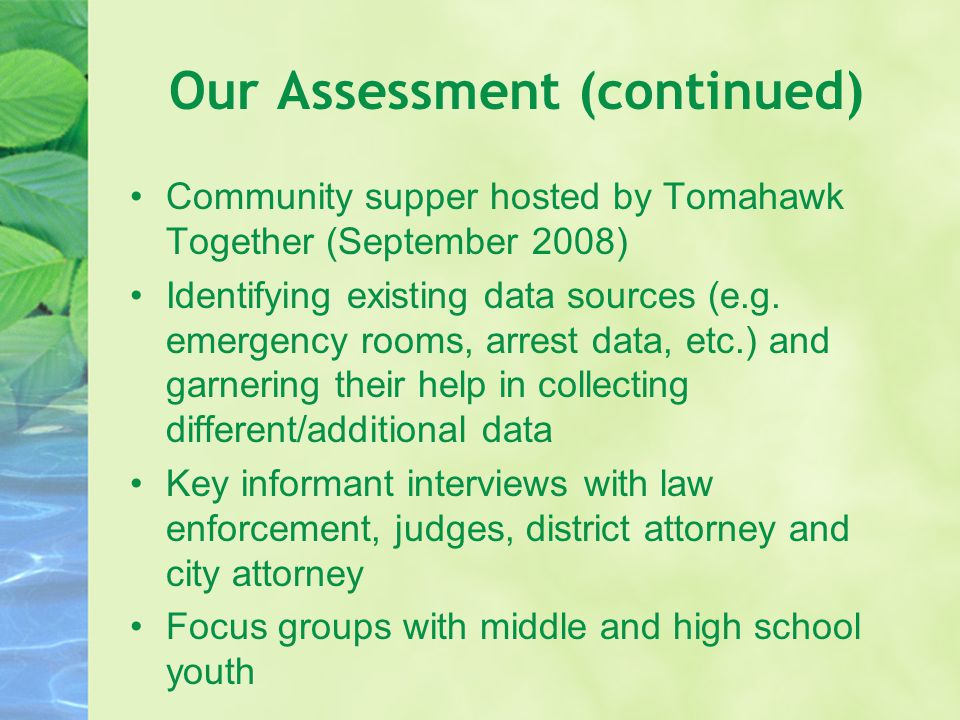 Our Assessment (continued) Community supper hosted by Tomahawk Together (September 2008) Identifying existing data sources (e.g. emergency rooms, arre