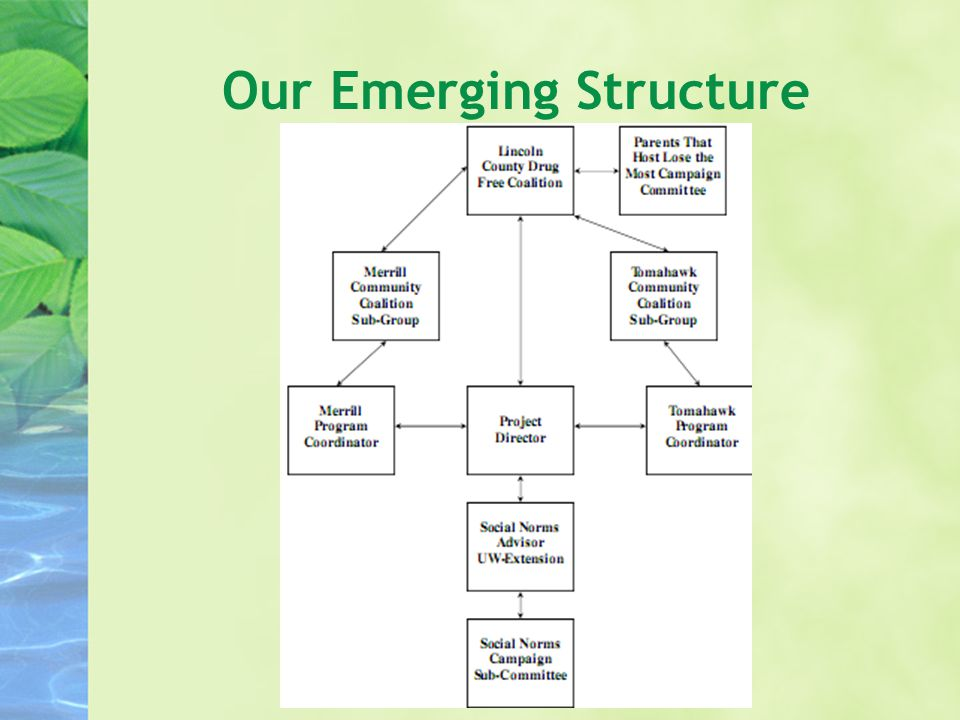 Our Emerging Structure
