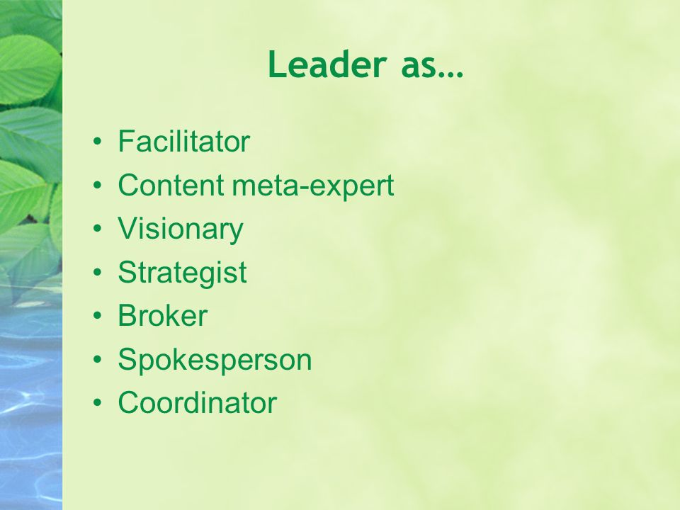 Leader as… Facilitator Content meta-expert Visionary Strategist Broker Spokesperson Coordinator