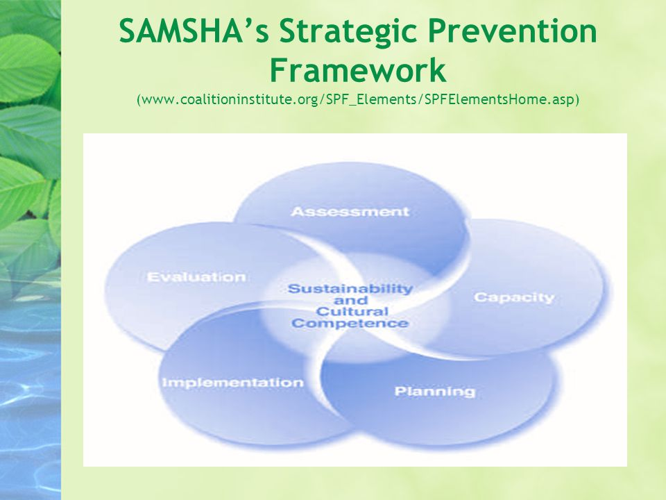 SAMSHA's Strategic Prevention Framework (www.coalitioninstitute.org/SPF_Elements/SPFElementsHome.asp)
