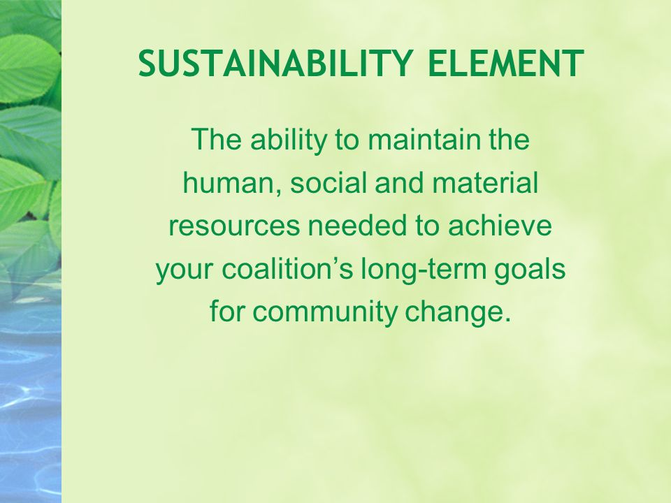 SUSTAINABILITY ELEMENT The ability to maintain the human, social and material resources needed to achieve your coalition's long-term goals for communi