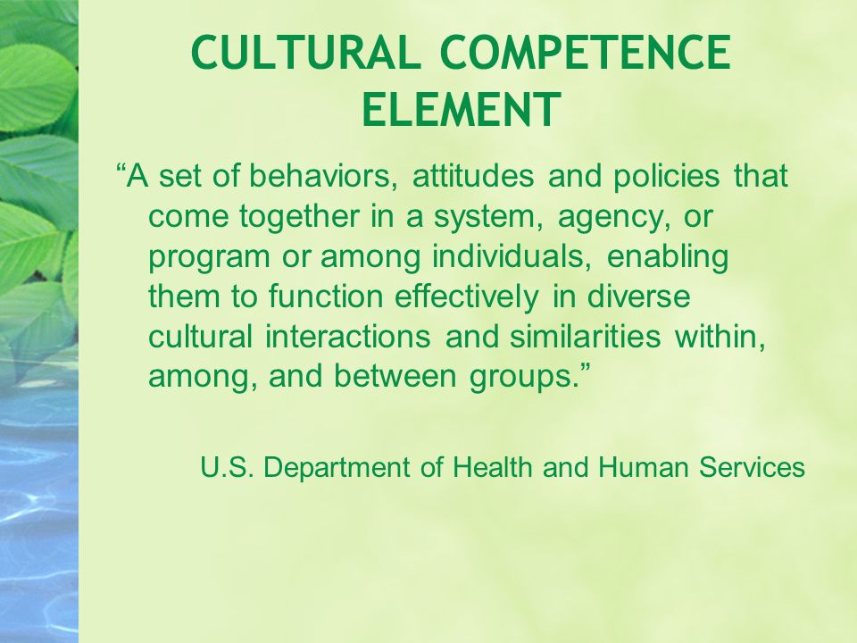 CULTURAL COMPETENCE ELEMENT A set of behaviors, attitudes and policies that come together in a system, agency, or program or among individuals, enabling them to function effectively in diverse cultural interactions and similarities within, among, and between groups. U.S.