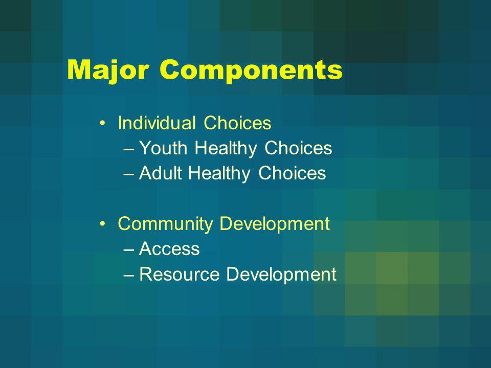 HealthConnect Economic Impact Analysis Health Care Directory Community Health Survey Health Care Providers Survey Health Care Coverage Analysis Community Forum Strategic Planning Retreat Balanced Scorecard Leadership Development Training