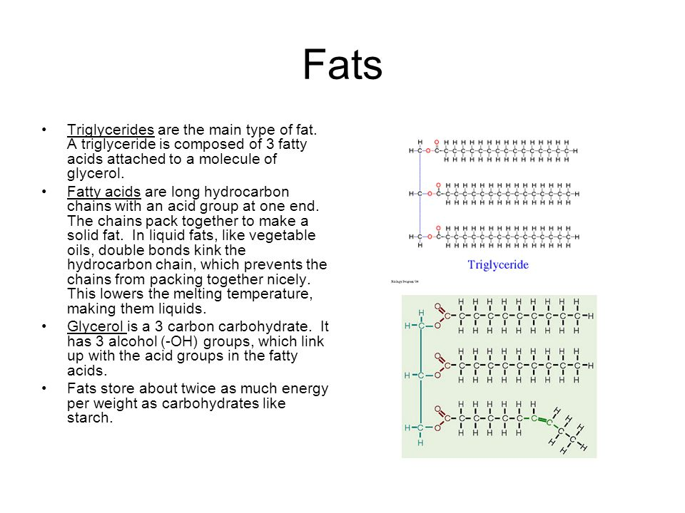 Fats Triglycerides are the main type of fat.