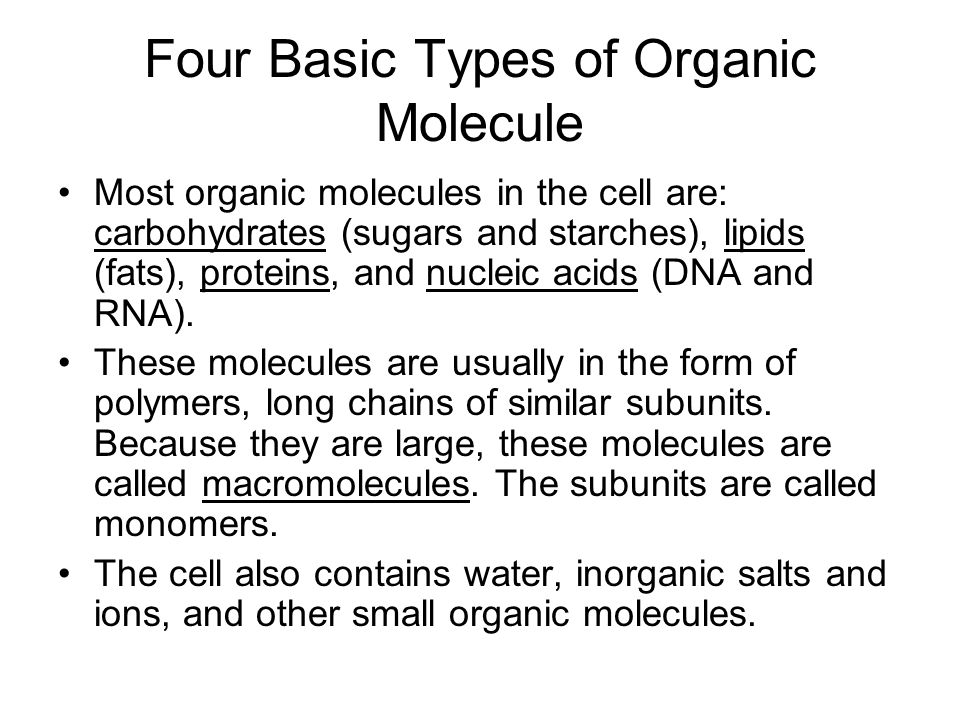 Four Basic Types of Organic Molecule Most organic molecules in the cell are: carbohydrates (sugars and starches), lipids (fats), proteins, and nucleic acids (DNA and RNA).