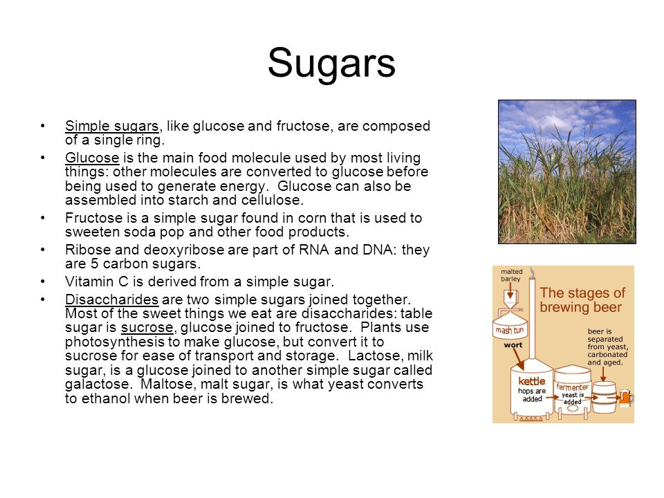 Sugars Simple sugars, like glucose and fructose, are composed of a single ring.