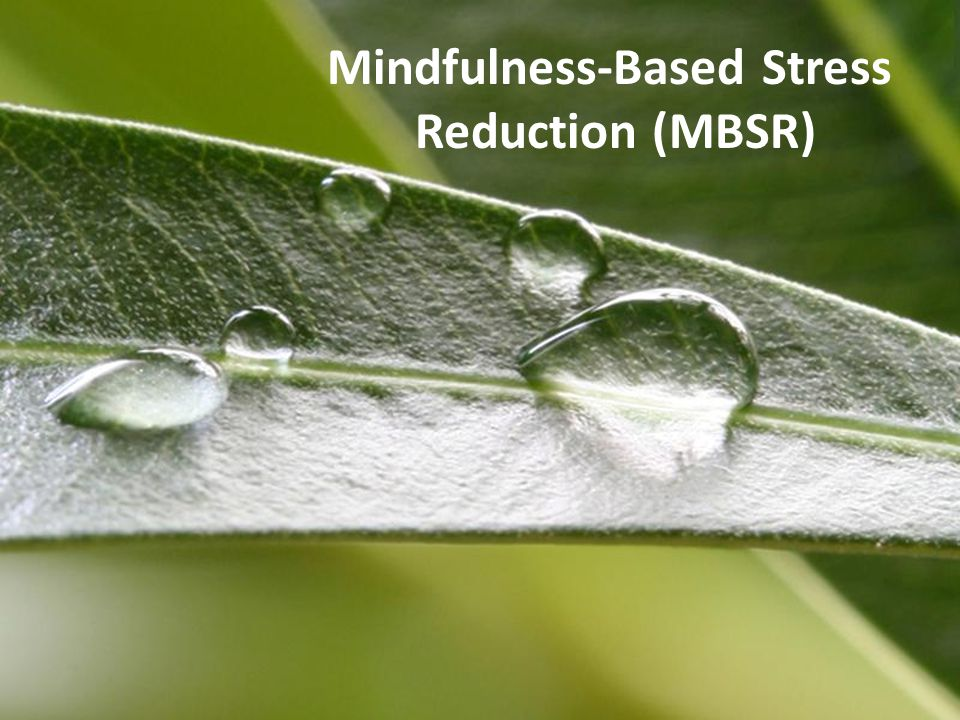 Powerpoint TemplatesPage 1Powerpoint Templates Mindfulness-Based Stress Reduction (MBSR)