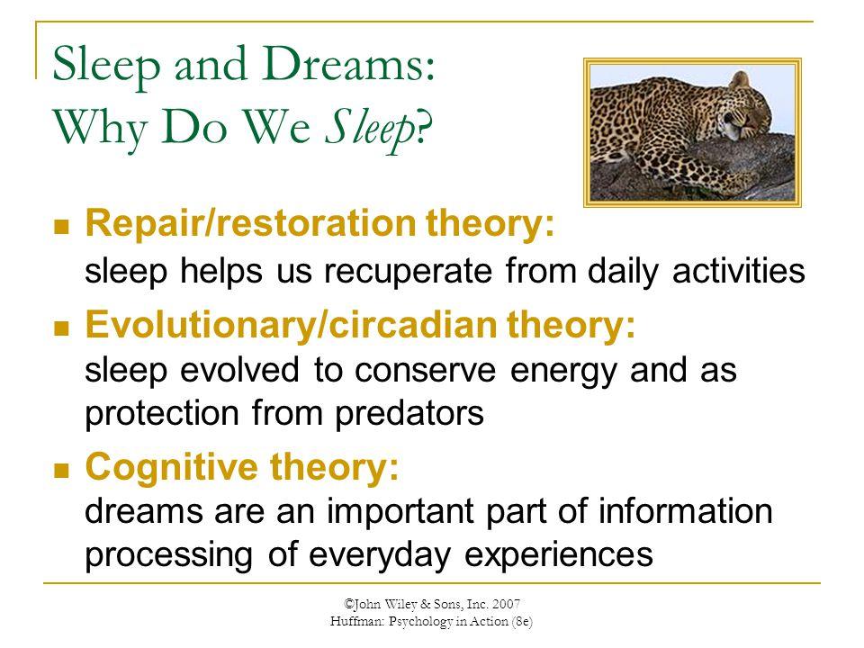 ©John Wiley & Sons, Inc. 2007 Huffman: Psychology in Action (8e) Sleep and Dreams: Why Do We Sleep? Repair/restoration theory: sleep helps us recupera