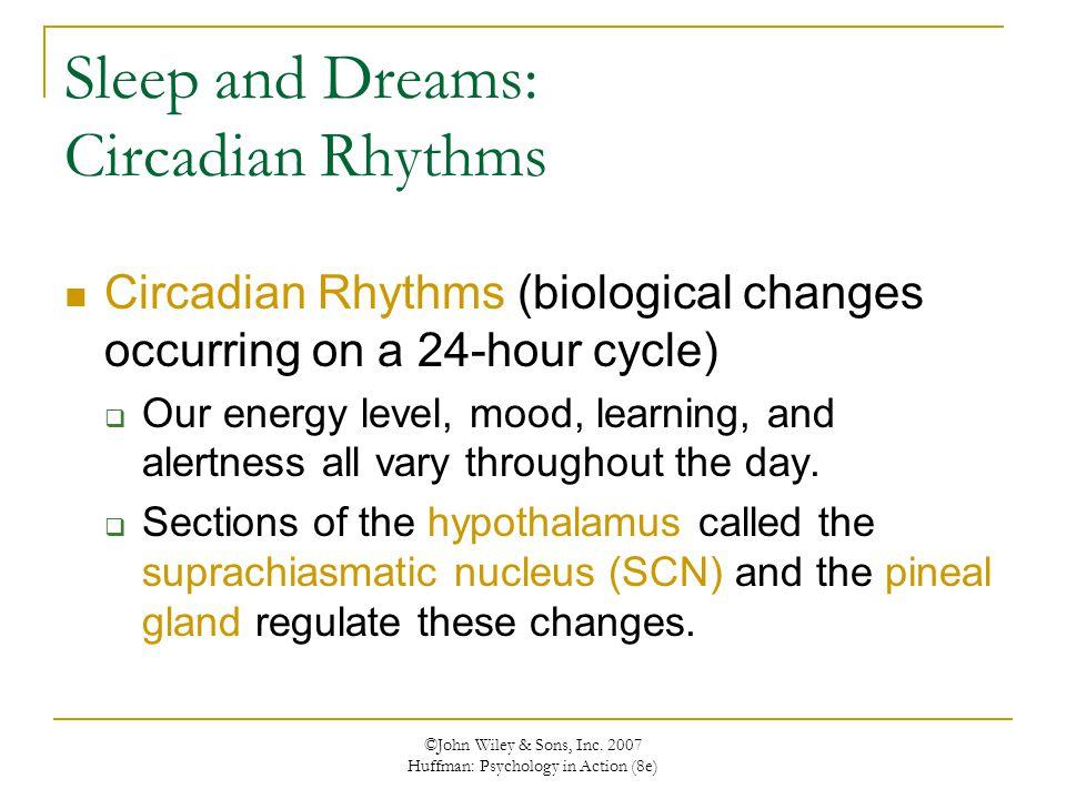 ©John Wiley & Sons, Inc. 2007 Huffman: Psychology in Action (8e) Sleep and Dreams: Circadian Rhythms Circadian Rhythms (biological changes occurring o