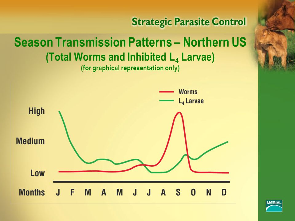 Season Transmission Patterns – Northern US (Total Worms and Inhibited L 4 Larvae) (for graphical representation only)