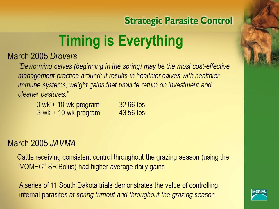 Timing is Everything March 2005 Drovers Deworming calves (beginning in the spring) may be the most cost-effective management practice around: it results in healthier calves with healthier immune systems, weight gains that provide return on investment and cleaner pastures. 0-wk + 10-wk program32.66 lbs 3-wk + 10-wk program43.56 lbs March 2005 JAVMA Cattle receiving consistent control throughout the grazing season (using the IVOMEC ® SR Bolus) had higher average daily gains.