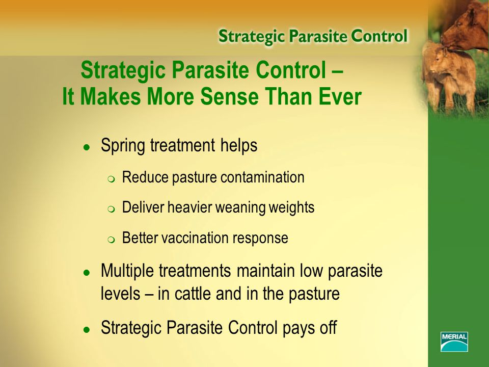 Strategic Parasite Control – It Makes More Sense Than Ever l Spring treatment helps m Reduce pasture contamination m Deliver heavier weaning weights m Better vaccination response l Multiple treatments maintain low parasite levels – in cattle and in the pasture l Strategic Parasite Control pays off