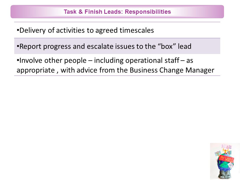 Task & Finish Leads: Responsibilities Delivery of activities to agreed timescales Report progress and escalate issues to the box lead Involve other people – including operational staff – as appropriate, with advice from the Business Change Manager