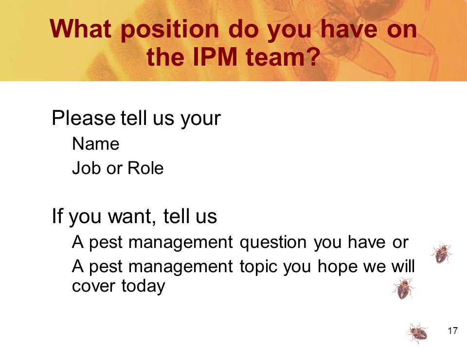 17 What position do you have on the IPM team.