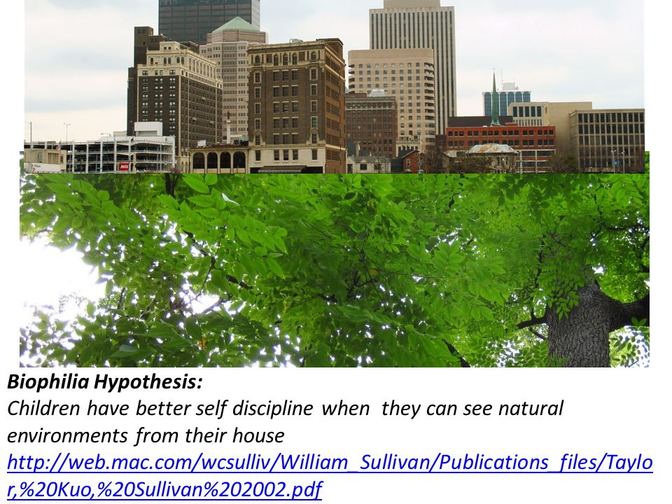 Biophilia Hypothesis: Children have better self discipline when they can see natural environments from their house http://web.mac.com/wcsulliv/William_Sullivan/Publications_files/Taylo r,%20Kuo,%20Sullivan%202002.pdf