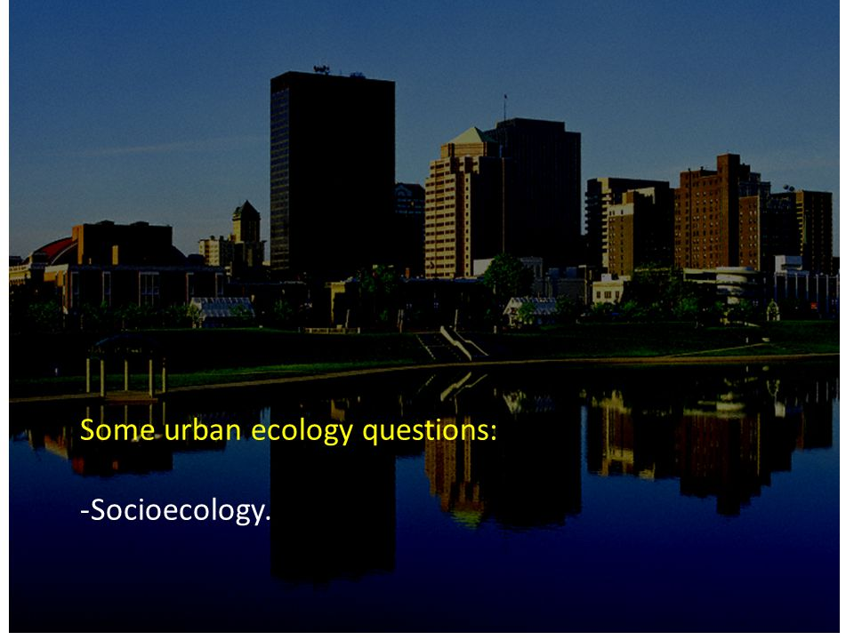 Some urban ecology questions: -Socioecology.