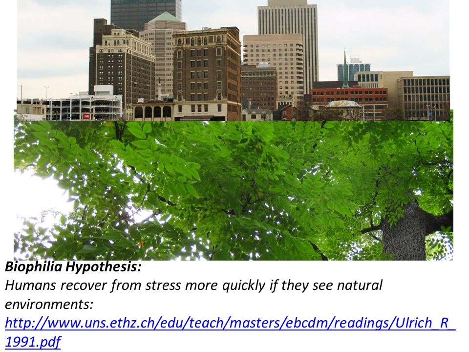 Biophilia Hypothesis: Humans recover from stress more quickly if they see natural environments: http://www.uns.ethz.ch/edu/teach/masters/ebcdm/readings/Ulrich_R_ 1991.pdf http://www.uns.ethz.ch/edu/teach/masters/ebcdm/readings/Ulrich_R_ 1991.pdf