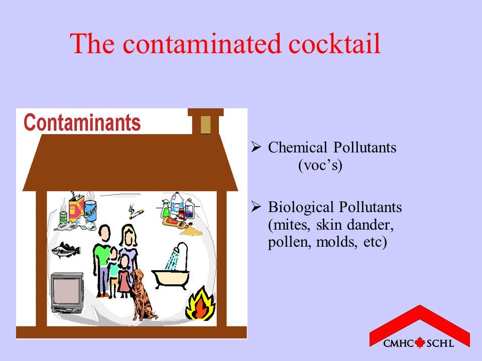 The contaminated cocktail  Chemical Pollutants (voc's)  Biological Pollutants (mites, skin dander, pollen, molds, etc)