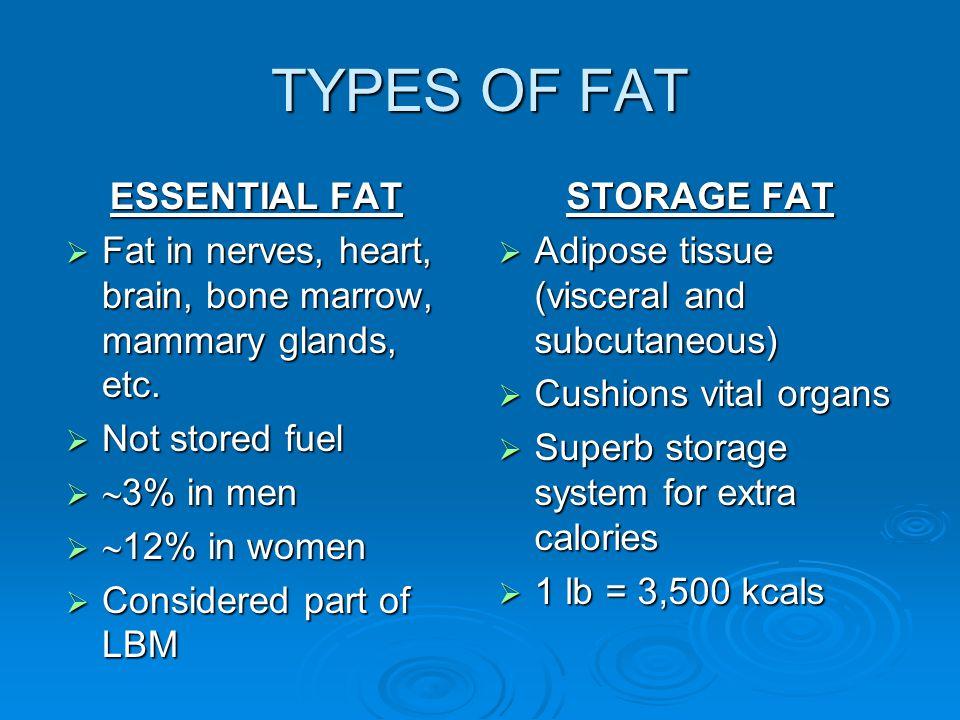 TYPES OF FAT ESSENTIAL FAT  Fat in nerves, heart, brain, bone marrow, mammary glands, etc.
