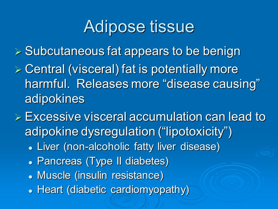 Adipose tissue  Subcutaneous fat appears to be benign  Central (visceral) fat is potentially more harmful.