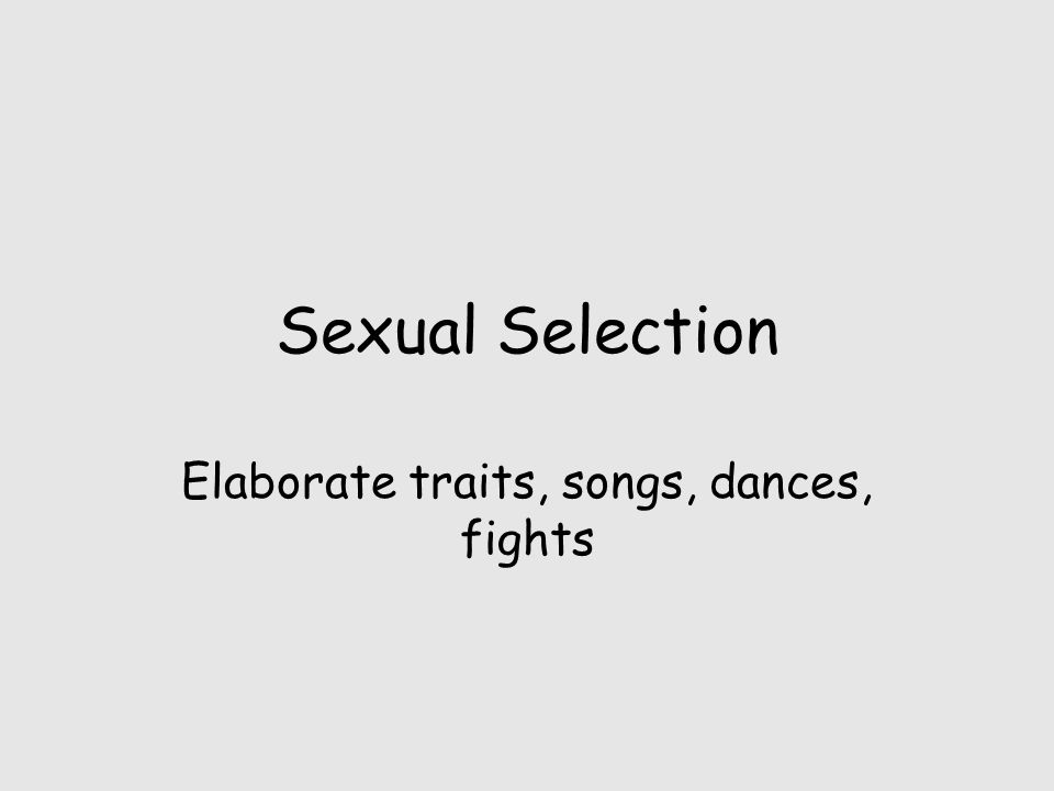 Sexual Selection Elaborate traits, songs, dances, fights