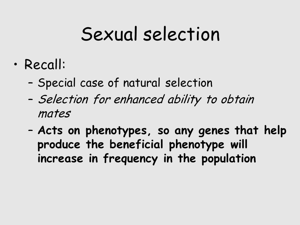 Sexual selection Recall: –Special case of natural selection –Selection for enhanced ability to obtain mates –Acts on phenotypes, so any genes that hel