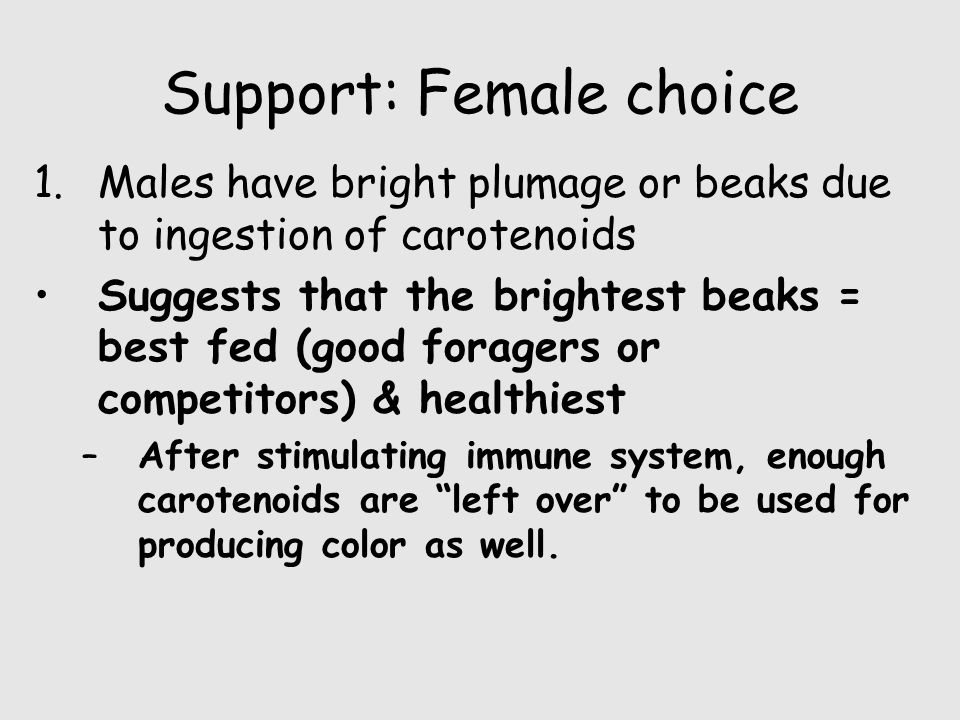 Support: Female choice 1.Males have bright plumage or beaks due to ingestion of carotenoids Suggests that the brightest beaks = best fed (good forager