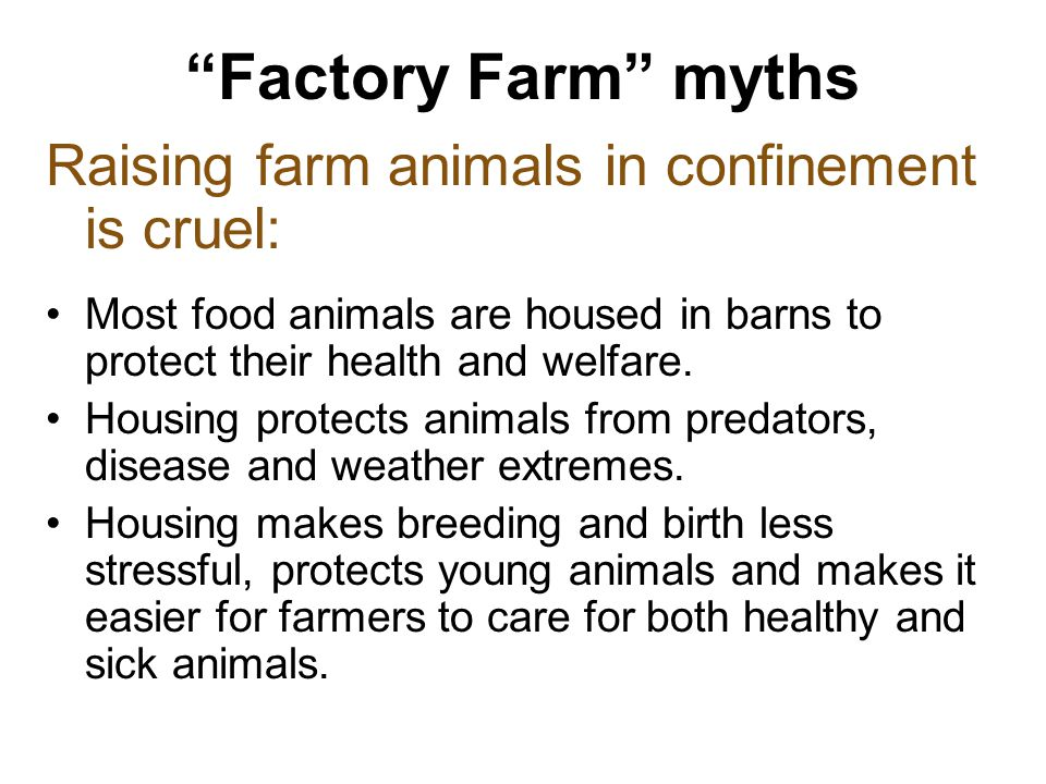 Factory Farm myths Raising farm animals in confinement is cruel: Most food animals are housed in barns to protect their health and welfare.