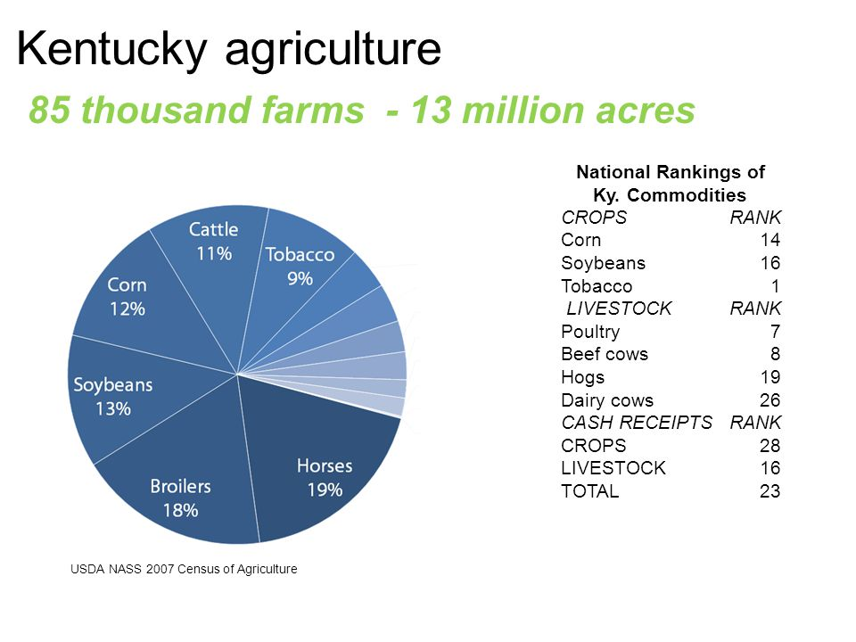 Kentucky agriculture 85 thousand farms - 13 million acres National Rankings of Ky.