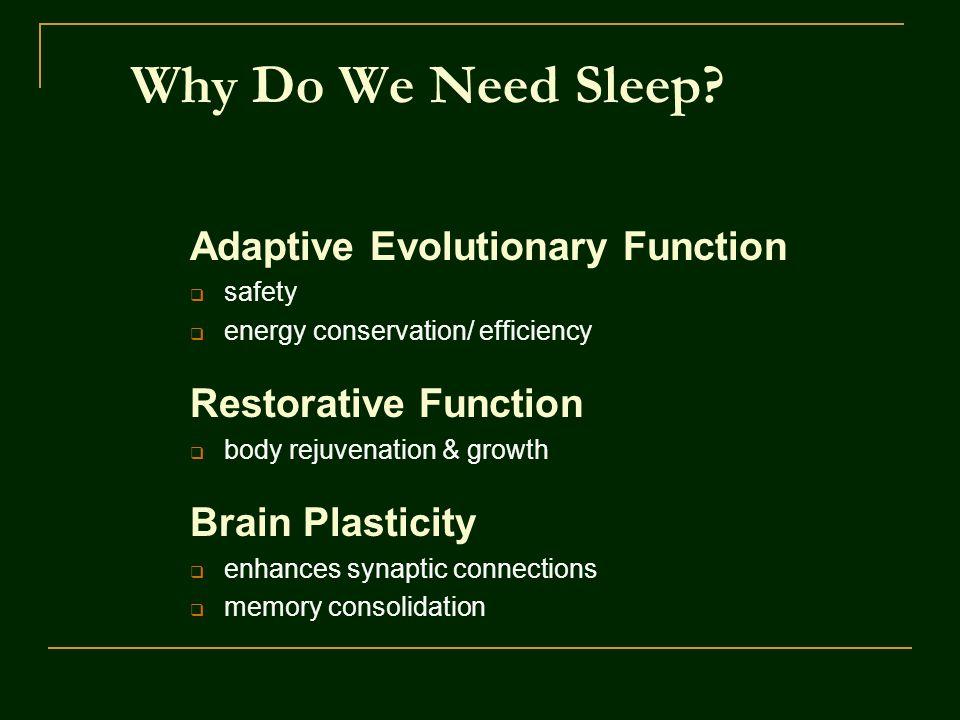 Why Do We Need Sleep.