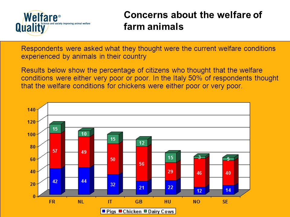 Respondents were asked what they thought were the current welfare conditions experienced by animals in their country Results below show the percentage of citizens who thought that the welfare conditions were either very poor or poor.