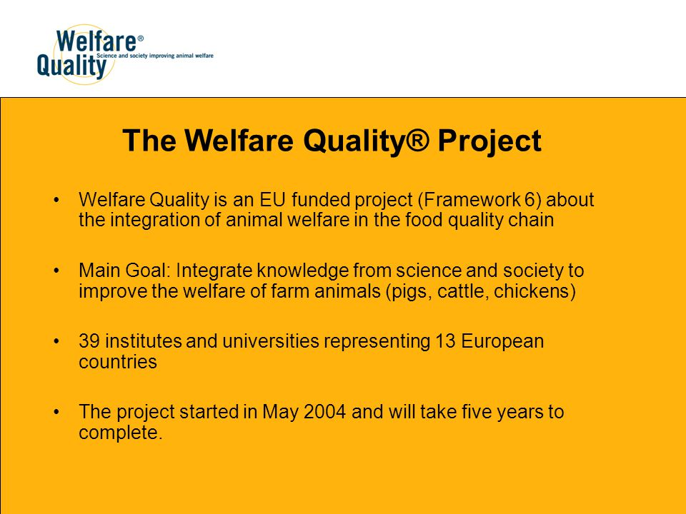 The Welfare Quality® Project Welfare Quality is an EU funded project (Framework 6) about the integration of animal welfare in the food quality chain Main Goal: Integrate knowledge from science and society to improve the welfare of farm animals (pigs, cattle, chickens) 39 institutes and universities representing 13 European countries The project started in May 2004 and will take five years to complete.