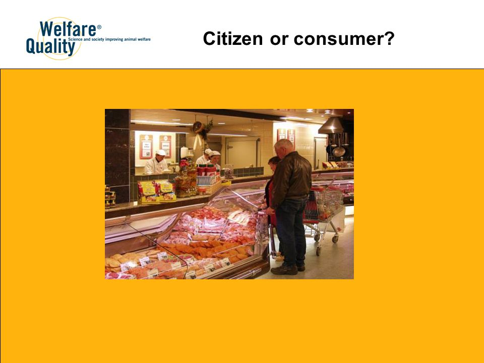 Citizen or consumer