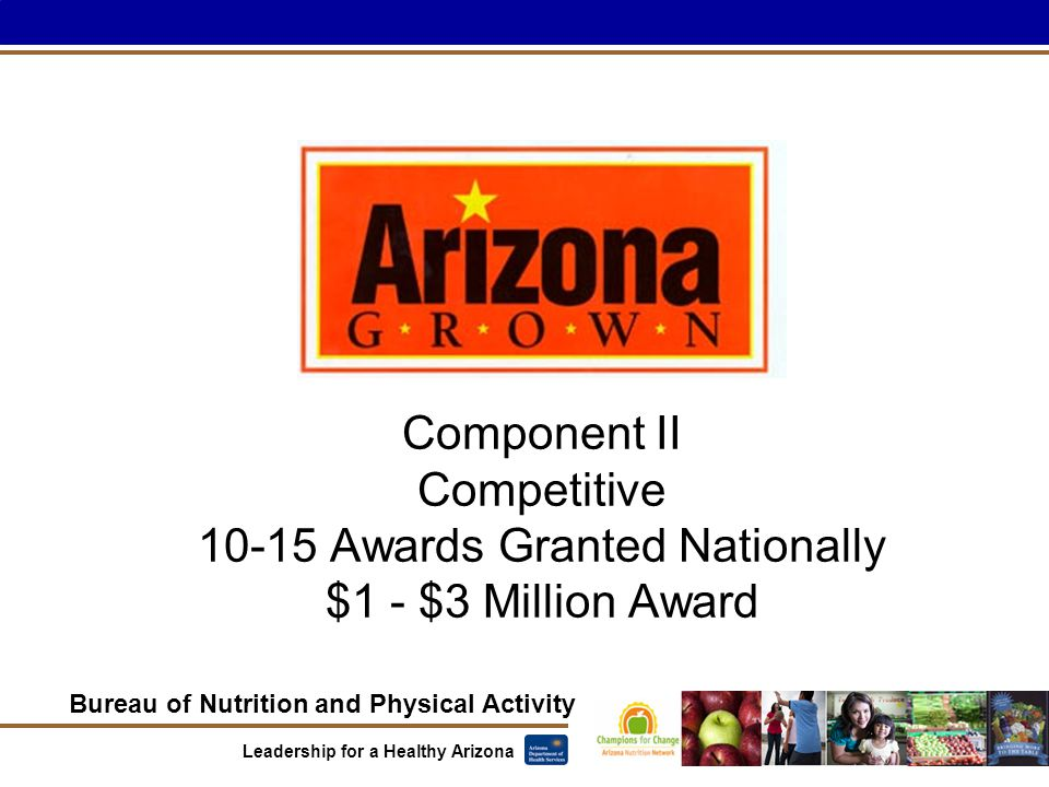 Bureau of Nutrition and Physical Activity Leadership for a Healthy Arizona Component II Competitive 10-15 Awards Granted Nationally $1 - $3 Million Award