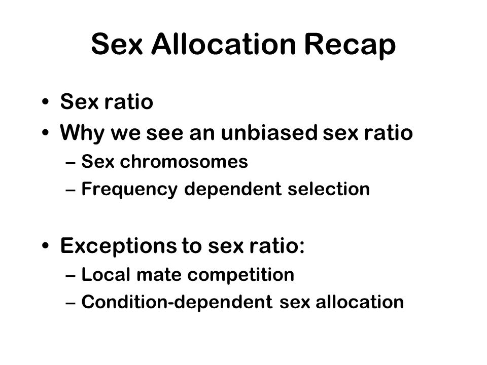 Sex Allocation Recap Sex ratio Why we see an unbiased sex ratio –Sex chromosomes –Frequency dependent selection Exceptions to sex ratio: –Local mate competition –Condition-dependent sex allocation
