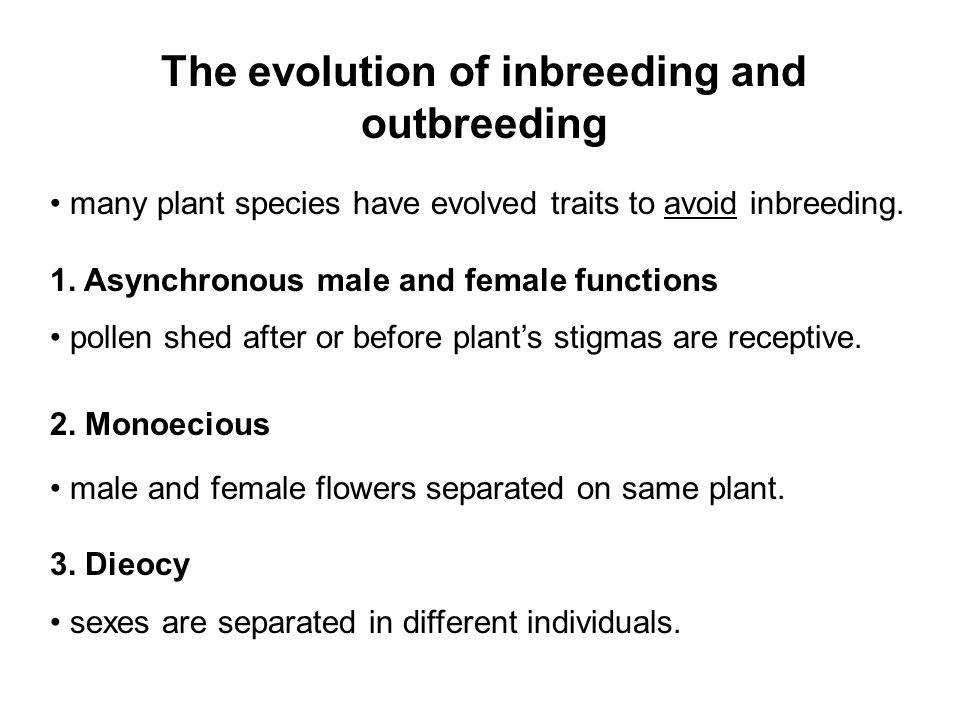 The evolution of inbreeding and outbreeding many plant species have evolved traits to avoid inbreeding.
