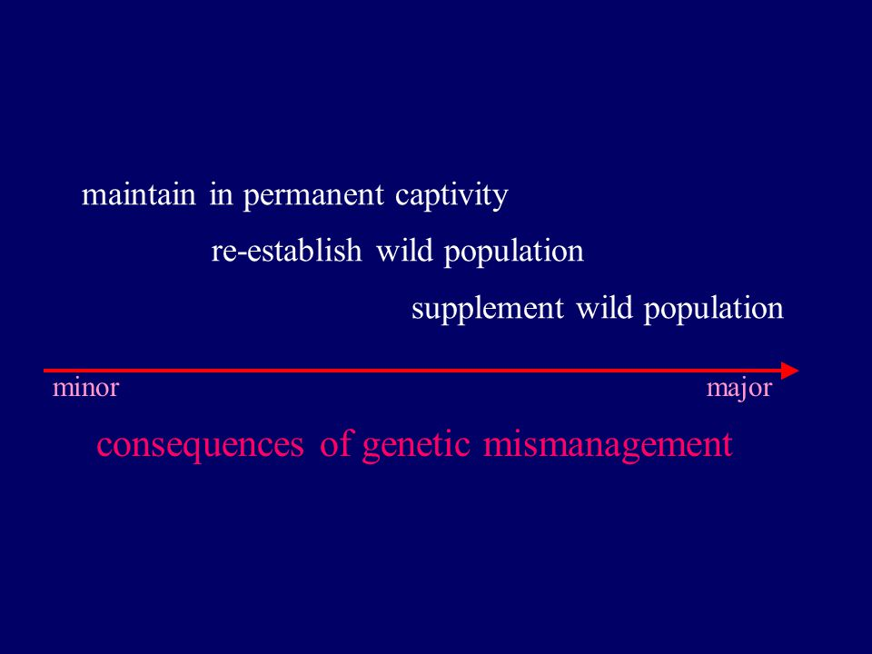 consequences of genetic mismanagement minor major maintain in permanent captivity re-establish wild population supplement wild population