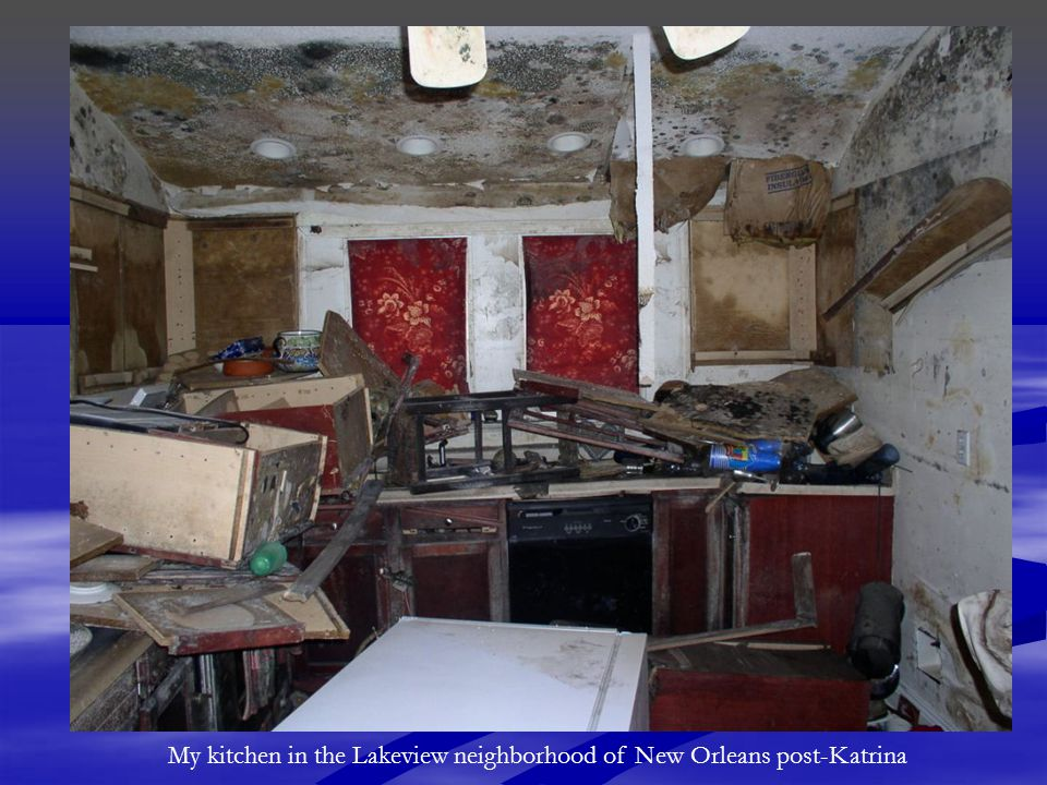 My kitchen in the Lakeview neighborhood of New Orleans post-Katrina
