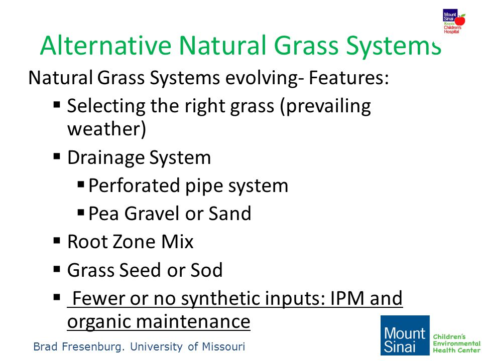 Alternative Natural Grass Systems Natural Grass Systems evolving- Features:  Selecting the right grass (prevailing weather)  Drainage System  Perfo