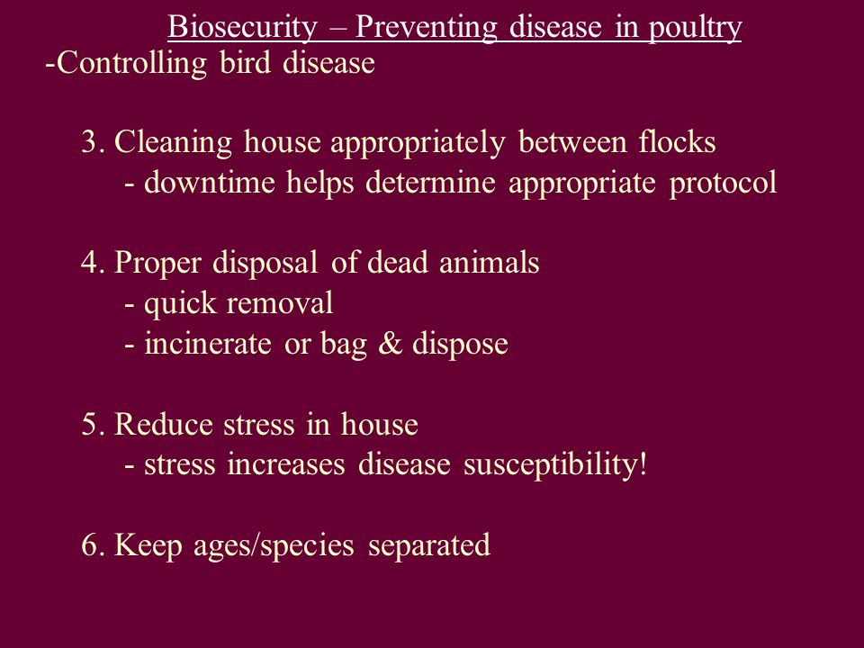 Biosecurity – Preventing disease in poultry -Controlling bird disease 3.