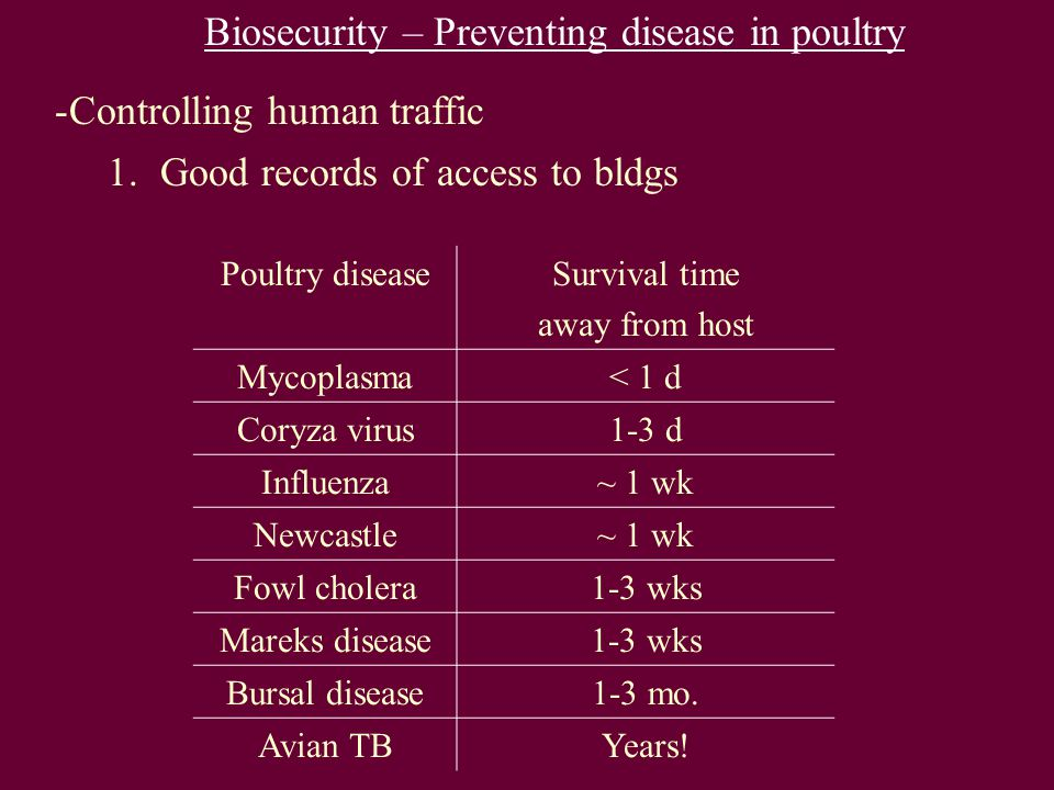 Biosecurity – Preventing disease in poultry -Controlling human traffic 1.Good records of access to bldgs Poultry diseaseSurvival time away from host Mycoplasma< 1 d Coryza virus1-3 d Influenza~ 1 wk Newcastle~ 1 wk Fowl cholera1-3 wks Mareks disease1-3 wks Bursal disease1-3 mo.