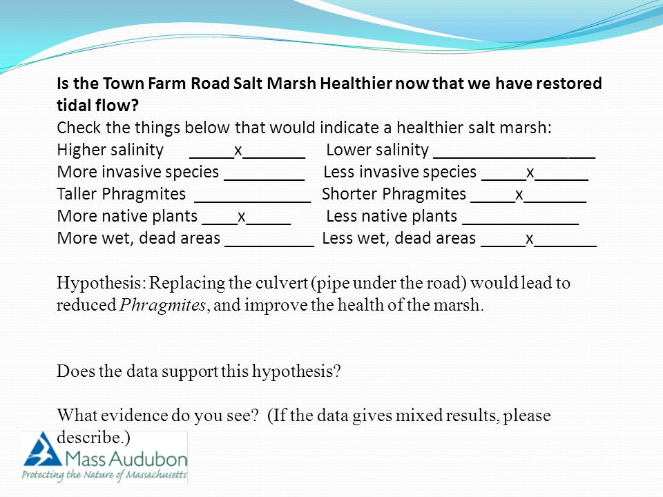 Is the Town Farm Road Salt Marsh Healthier now that we have restored tidal flow? Check the things below that would indicate a healthier salt marsh: Hi