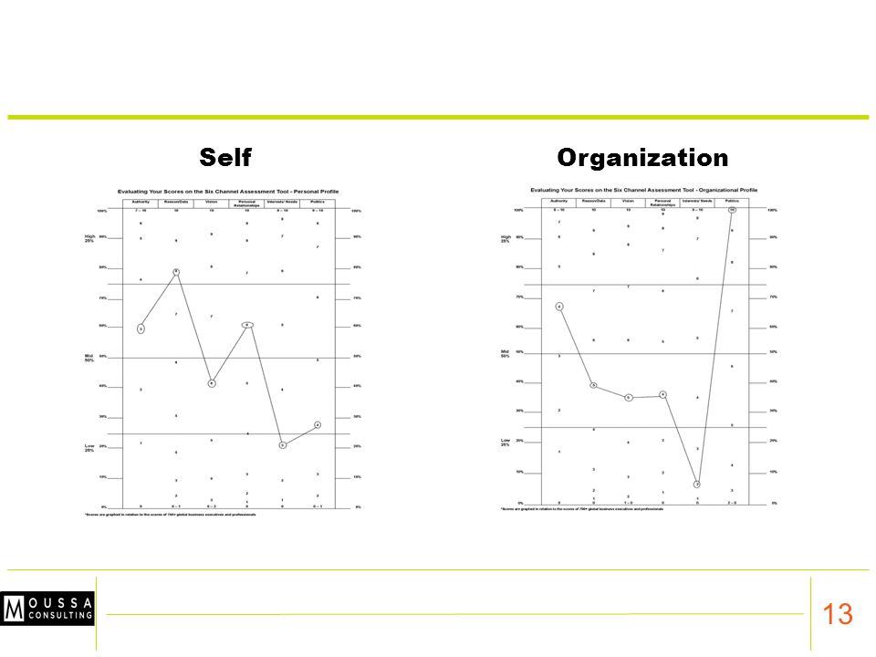 13 SelfOrganization