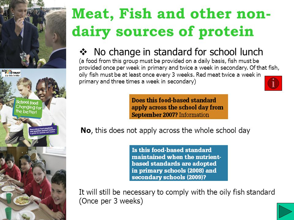 Meat, Fish and other non- dairy sources of protein  No change in standard for school lunch (a food from this group must be provided on a daily basis, fish must be provided once per week in primary and twice a week in secondary.