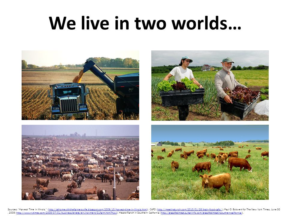 """We live in two worlds… Sources: """"Harvest Time in Illinois,"""" (http://athomewiththefarmerswife.blogspot.com/2009/10/harvest-time-in-illinois.html); CAFO"""