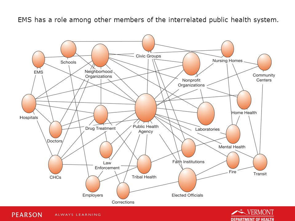 EMS has a role among other members of the interrelated public health system.