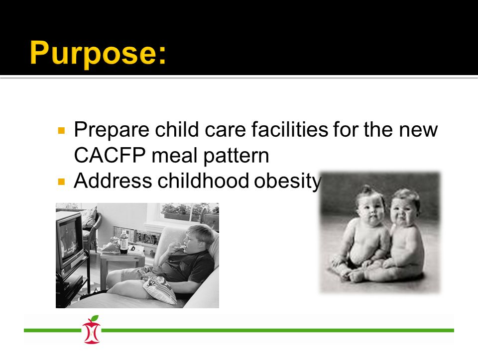  Prepare child care facilities for the new CACFP meal pattern  Address childhood obesity
