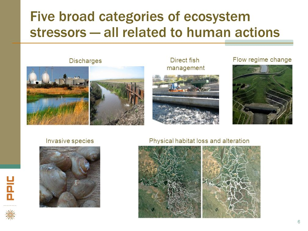 More information available at www.ppic.org Stress Relief: Prescriptions for a Healthier Delta Ecosystem (Hanak et al.